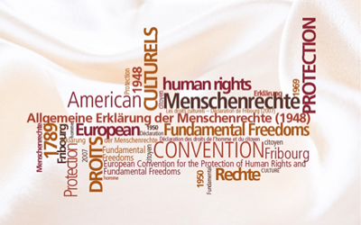 Observatoire De La Diversité Et Des Droits Culturels